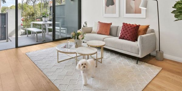 How To Rent If You Have Pets A State By Breakdown Of Rules For Landlords And Tenants