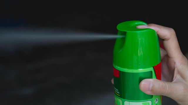 Think before you spray: The unintended harms of bug repellent