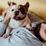 Da illest checklist fo' pet-ownin prospectizzle property buyers