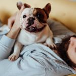 The ultimate checklist for pet-owning prospective property buyers
