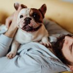 The ultimate checklist for pet-owning prospective buyers