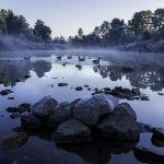 Ducks at minus seven. Photo: Rajeel Naicker