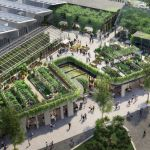 Green on top, clean inside: What our buildings need for our health