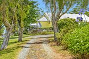 Bright yellow estate in Gold Coast hinterland heads for epic auction