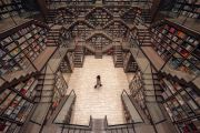 Design team creates one of the world's most beautiful bookstores