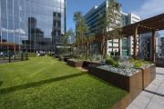 Green spaces produce healthy workers