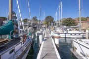 Balmain marina with rare adjoining freehold land on the market