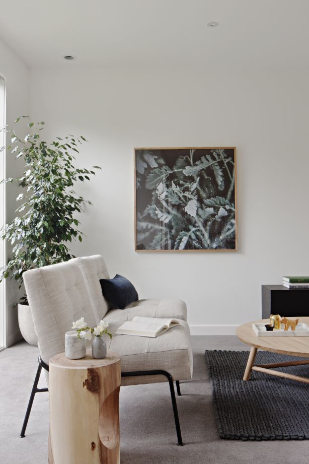 Touted for their many health benefits, indoor plants have returned to our homes with a vengeance. Styling: The Real Estate Stylist. Photo: Shannon McGrath