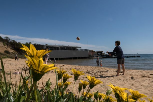 Canadian Bay Beach is a hot spot for families. Photo: Leigh Henningham.