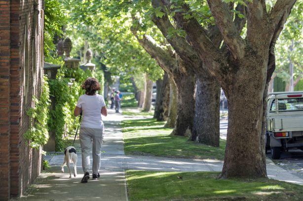 The Melbourne suburb of Toorak