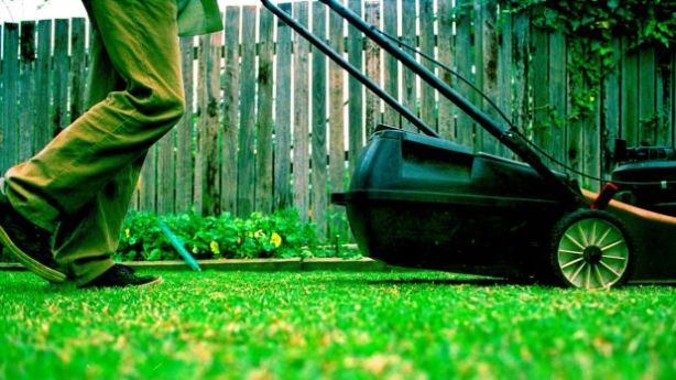 Tenants are responsible for mowing lawns.