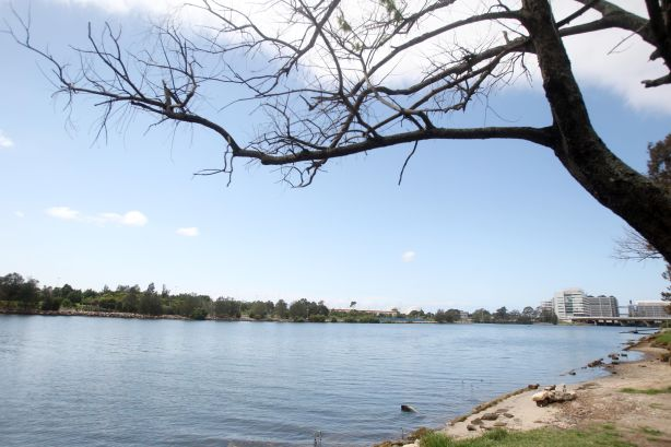 Cahill Park in Wolli Creek