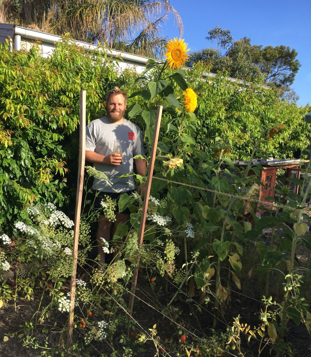 Belong Green Homes_Amy Hunt_Frankston backyard_David