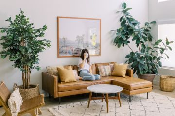 Going green: The interior trend that is good for your health