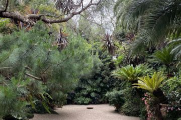 See inside Melbourne's best gardens without leaving home