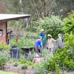 Australia's top towns where you can live a sustainable life