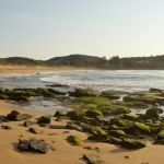 Discover the affluent yet laid-back suburb with a charming coastal community