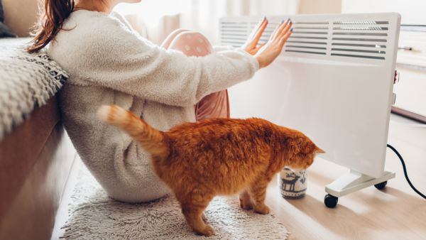 Tips to warm up while keeping your environmental footprint down