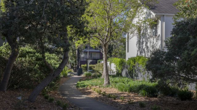 The Sydney suburb that sounds like an isolation dream