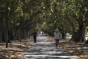 Park life: A day out in Fawkner Park, South Yarra