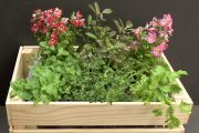 How to make a self-watering herb planter box