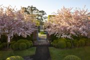 Paul Bangay on the joy of a blossoming spring garden