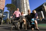 'This is such a sad situation': Sydney's apartment pet saga continues