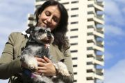'Crushing': Pet ban back in place at Sydney apartment buildings