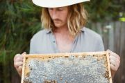 Eight simple steps to make your garden more bee-friendly