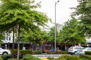 From downtrodden to destination: A Melbourne suburb reborn