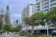 Green shoots start to appear on Sunshine Coast