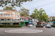 Wahroonga: Green spaces galore in the 'house-proud' leafy Sydney suburb