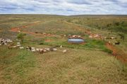 Gina Rinehart sells WA cattle stations for $100m