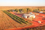NT fodder-growing 'oasis' snapped up by conglomerate
