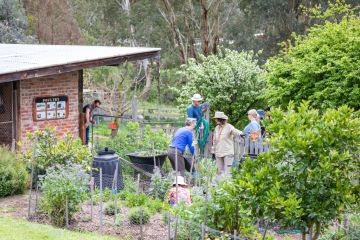 Self-sufficient: The top towns in Australia where you can live a sustainable life