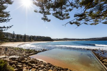 'A forest with houses in it': What it's like to live in Macmasters Beach
