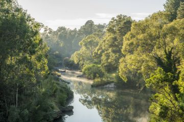 'They all look spectacular': The best spots to visit in the NSW Southern Highlands