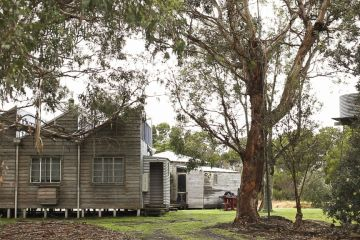 A not-so-average cabin in regional Victoria, designed and built by one man