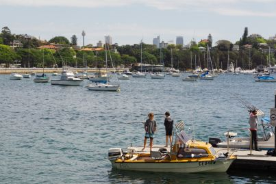 What makes Rose Bay one of Sydney's most exclusive neighbourhoods