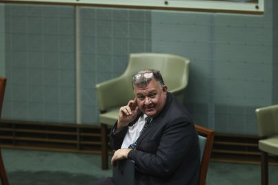 Hughes MP Craig Kelly sells Illawong home for $1,651,000 at auction