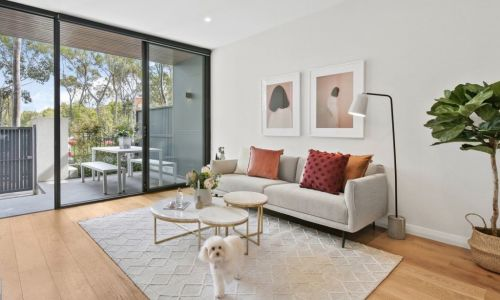 Pets in rental properties: How the rules differ around Australia