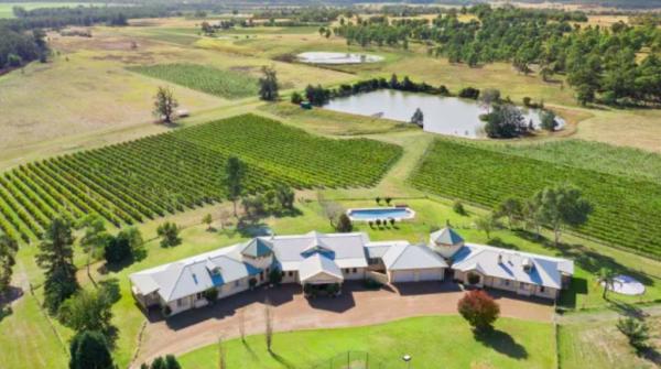 Blackwall director Robin Tedder lists Hunter Valley vineyard