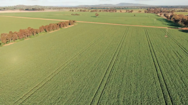 Farmers buy back Riverina holding from US fund