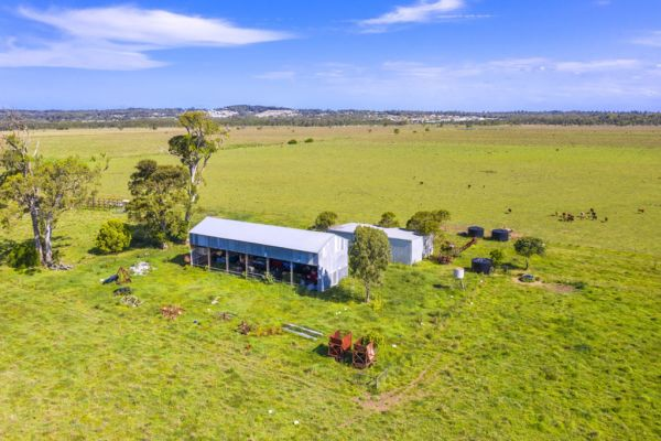Why this cattle property is attracting buyers who are interested in what