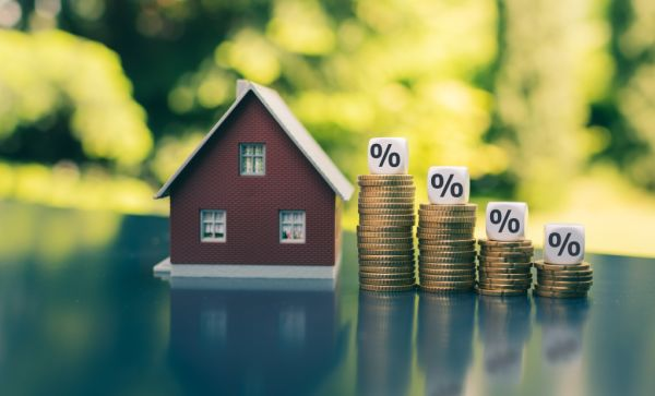 The questions about interest rates you're too embarrassed to ask