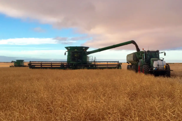 Expanding farmers driving up WA wheat belt values