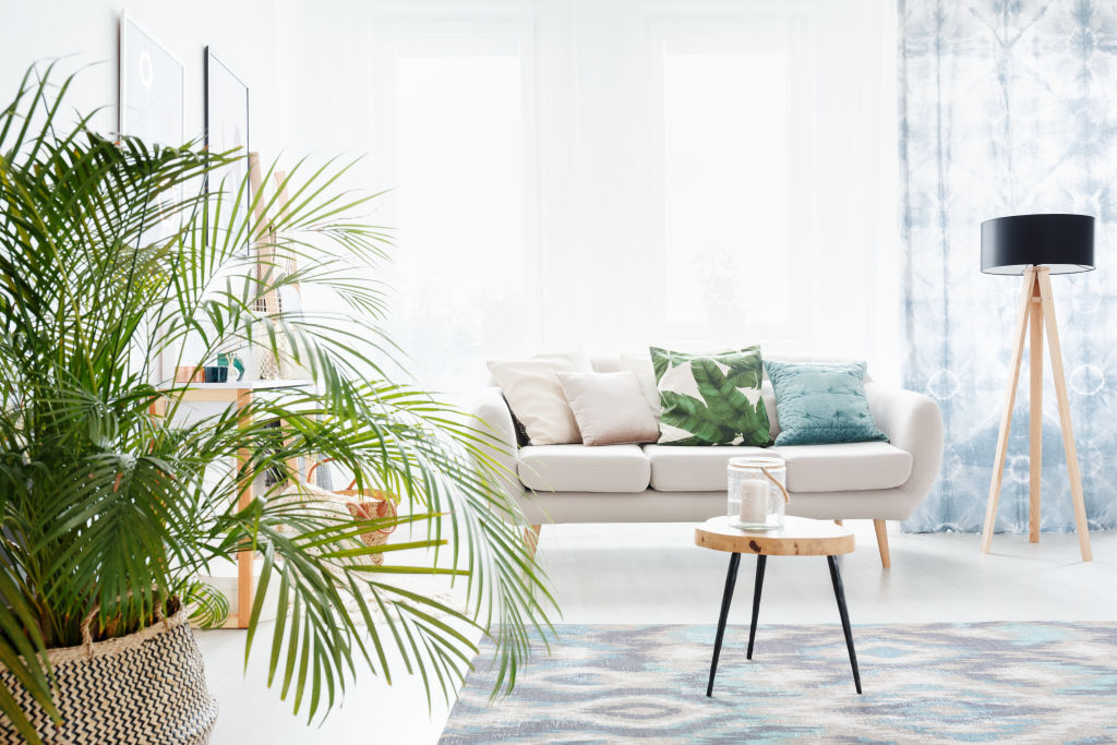 Property styled for sale with indoor plants