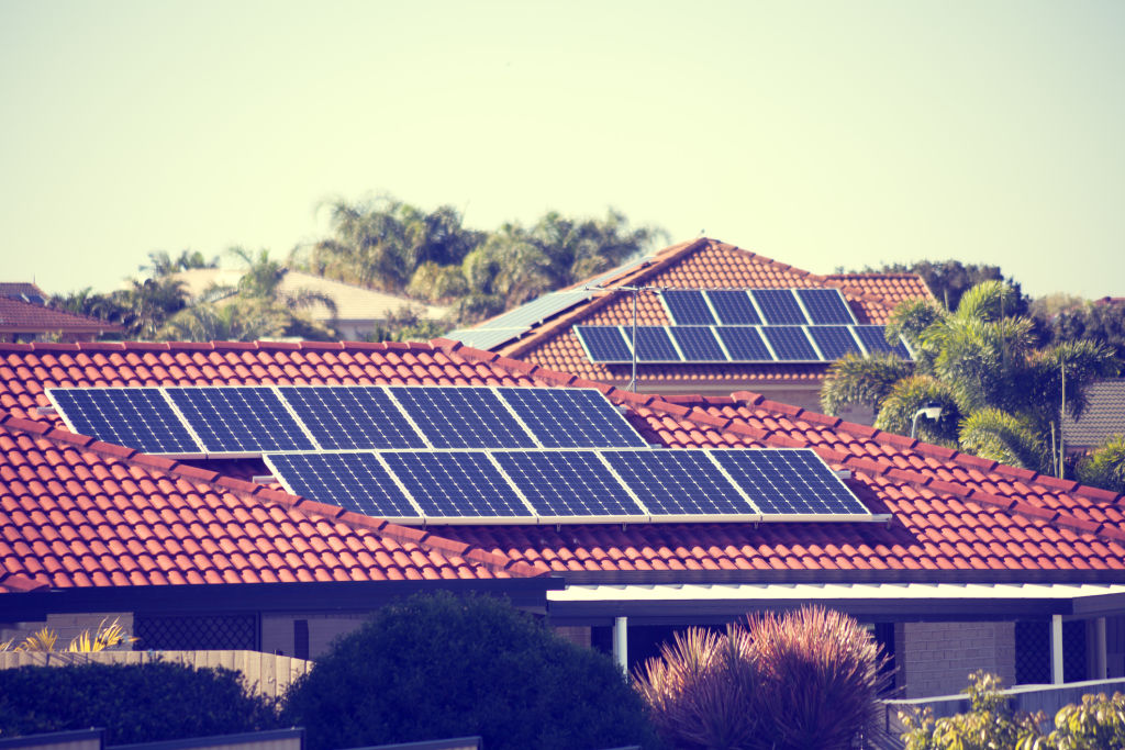 Solar panels on suburban homes in summer