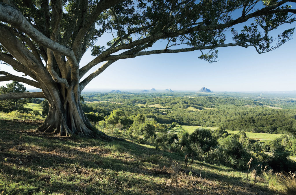 A scenic view of Noosa Hinterland in Queensland