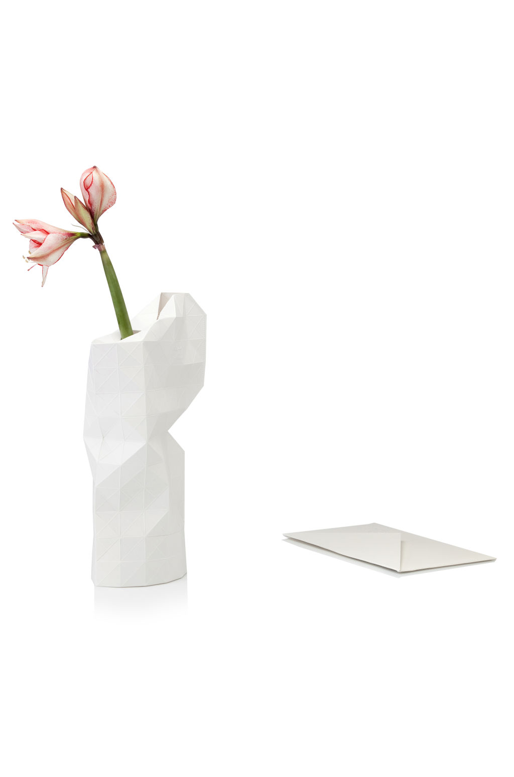 Safari Living Paper Vase